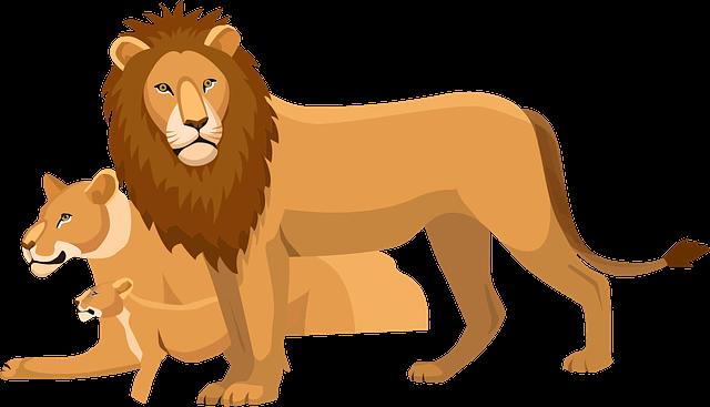 Lion Fact In Gujarati - Janva Jevu
