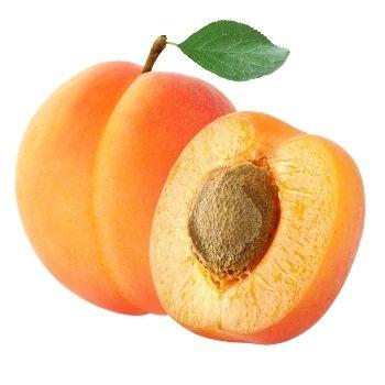 Apricot in Gujarati