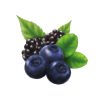 Blueberry in Gujarati Name image